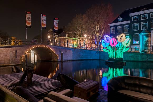 Amsterdam Light Festival Tulips (Water Colors Cruise) - Amsterdam Welcome